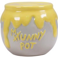 Winnie the Pooh Shaped Money Box