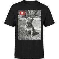 LIFE Magazine Dog Men's T-Shirt - Black - XXL - Black