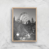 Yosemite Tree Giclee Art Print - A3 - Wooden Frame