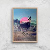 Ikiiki Llama Giclee Art Print - A2 - Wooden Frame