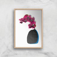 Orchid Giclee Art Print - A2 - Wooden Frame