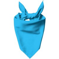 Bright Blue Dog Bandana - M