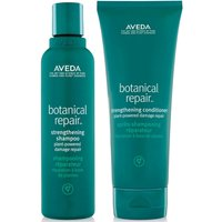 Aveda Botanical Repair Shampoo and Conditioner Duo