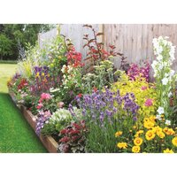 Bee and Butterfly Border Collection - 3m x 60cm