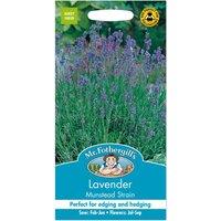 Mr. Fothergills Lavender Munstead Strain Seeds