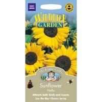 Mr. Fothergills Sunflower Hallo Seeds