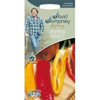 DD Pepper Sweet Seeds
