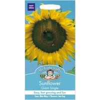 Mr. Fothergills Sunflower Giant Single Seeds