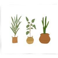 Plants Fleece Blanket - M