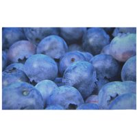 Blueberries Woven Rug - Small