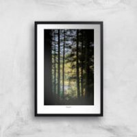 Thunderbolt Photography Macclesfield Forest Art Print - A3 - No Hanger - Photography Gifts