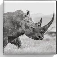 Chantecaille Luminescent Eye Shade 2.5g (Various Shades) - Rhinoceros