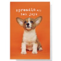 Spreadin All Teh Joyz Greetings Card - Standard Card