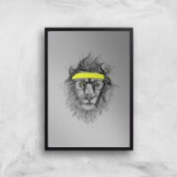 Balazs Solti Lion and Sweatband Art Print - A2 - Black Frame