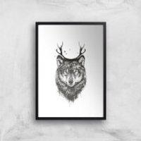 Balazs Solti Wolf Art Print - A3 - Black Frame