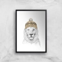 Balazs Solti Lion with Hat Art Print - A4 - Black Frame - Hat Gifts