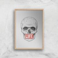 Balazs Solti Life Skull Art Print - A4 - Wood Frame