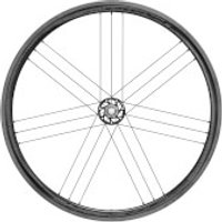Campagnolo Bora WTO 33 Carbon Clincher Rear Wheel - Campagnolo - Dark Label