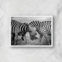 Head Rub Giclee Art Print - A4 - White Frame