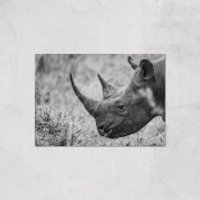 Grayscale Rhino Giclee Art Print - A3 - Print Only