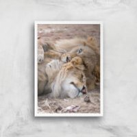 Morning Cuddles Giclee Art Print - A4 - White Frame - Cuddles Gifts