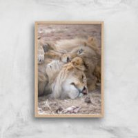 Morning Cuddles Giclee Art Print - A3 - Wooden Frame - Cuddles Gifts