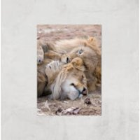 Morning Cuddles Giclee Art Print - A2 - Print Only - Cuddles Gifts