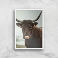 How Now Brown Cow Giclee Art Print - A4 - White Frame - Cow Gifts