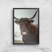 How Now Brown Cow Giclee Art Print - A4 - Black Frame - Cow Gifts