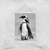 A Couple Of Penguins Giclee Art Print - A3 - White Hanger - Penguins Gifts