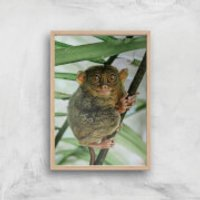 Those Big Brown Eyes Giclee Art Print - A2 - Wooden Frame - Brown Gifts