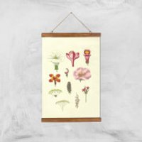 Researching Flowers Giclee Art Print - A3 - Wooden Hanger - Flowers Gifts