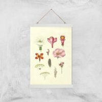 Researching Flowers Giclee Art Print - A3 - White Hanger - Flowers Gifts