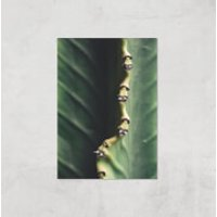 Leaf Close Up Giclee Art Print - A3 - Print Only