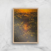 Sunset Field Giclee Art Print - A2 - Wooden Frame