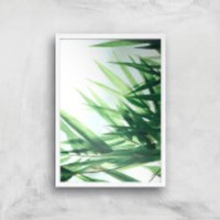 Life Giclee Art Print - A2 - White Frame - Life Gifts