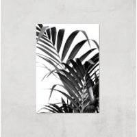 Palm Life Giclee Art Print - A4 - Print Only - Life Gifts