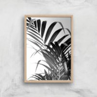 Palm Life Giclee Art Print - A3 - Wooden Frame - Life Gifts