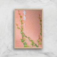 Climbing Ivy Giclee Art Print - A2 - Wooden Frame - Climbing Gifts