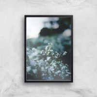 in homeware x Charlotte Greedy Winter Blossom Giclee Art Print - A2 - Black Frame