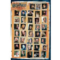 Harry Potter 7 Characters - Maxi Poster - 61 x 91.5cm - Harry Potter Gifts