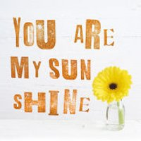 Howard Shooter (You Are My Sun Shine) - 40x40cm Canvas