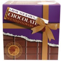 Grow Your Own Chocolate Flowers - Flowers Gifts