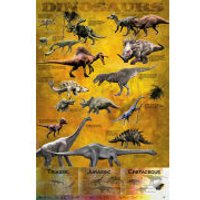 Dinosaurs Chart - Maxi Poster - 61 x 91.5cm - Dinosaurs Gifts