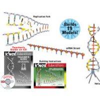 K'NEX DNA, Replication and Transcription Set (78780)