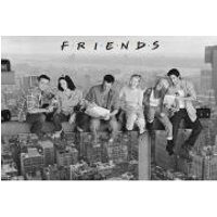 Friends On Girder - Maxi Poster - 61 x 91.5cm