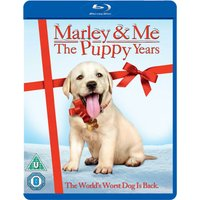 Marley and Me 2: The Puppy Years
