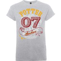 Harry Potter Gryffindor Seeker Potter Mens Grey T-Shirt - XXL - Grey