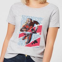 Marvel Avengers AntMan And Wasp Collage Women's T-Shirt - Grey - 3XL - Grey