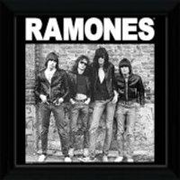 The Ramones Album - 12   x 12   Framed Album Prints - Ramones Gifts